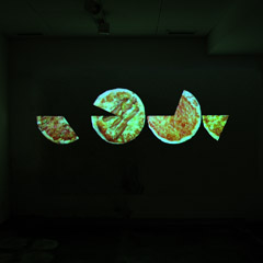 Untitled (New York, London, Moscow, Tokyo), slideshow projection( 24 hours) 2003